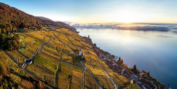 Switzerland Autumn: Ligerz, Drohnenaufnahme